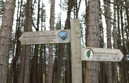 主题公园导示设计打造现代旅游环境