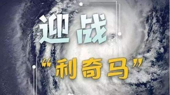 """风王""""利奇马"""""""